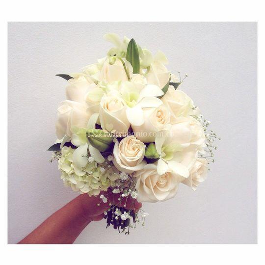 Yugo rosas orquideas blancas