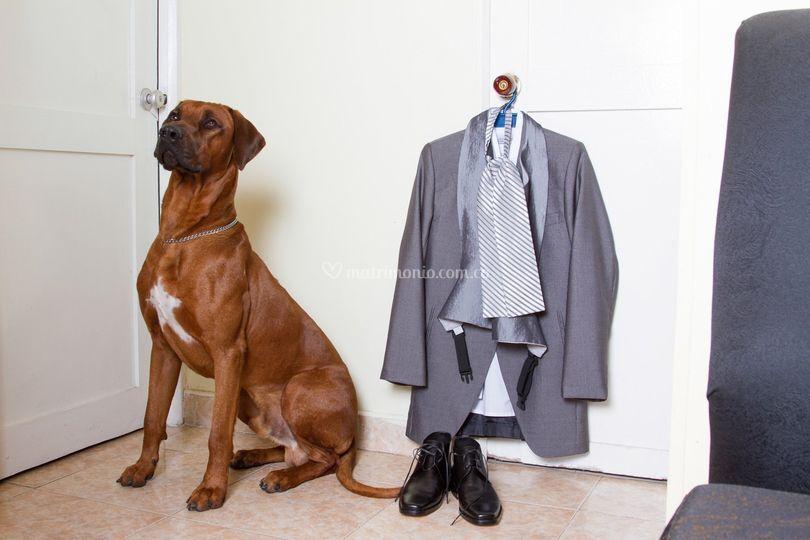 Vestido de novio