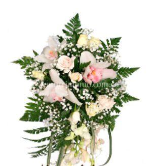 Flores y Detalles El Olivar