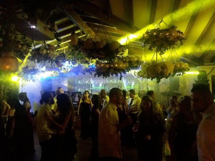 Fiesta en Fizebad