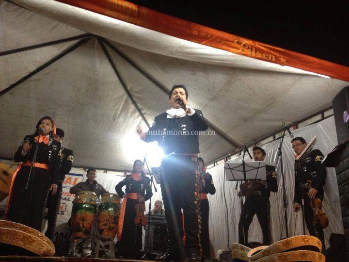 Presentación mariachi