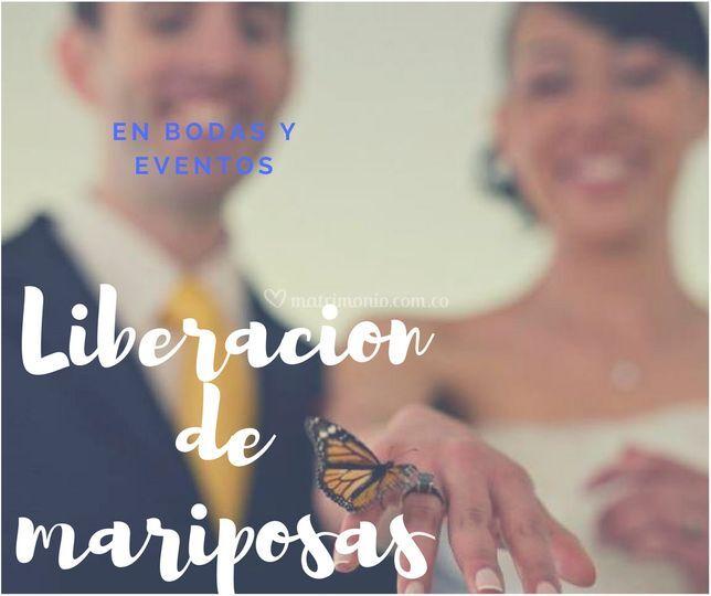 En bodas y eventos