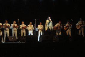 Mariachi Real Alazan