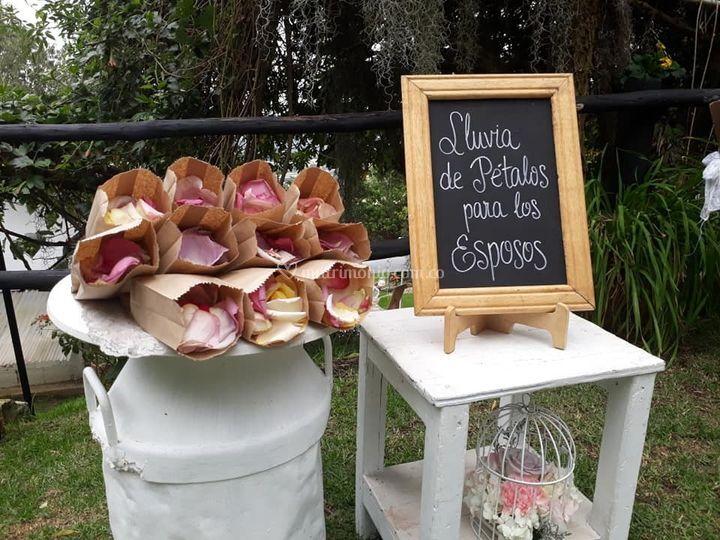 Detalles Mirador Sabana