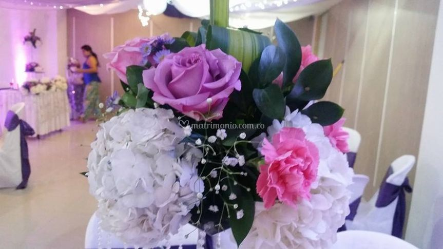 Lila y rosa