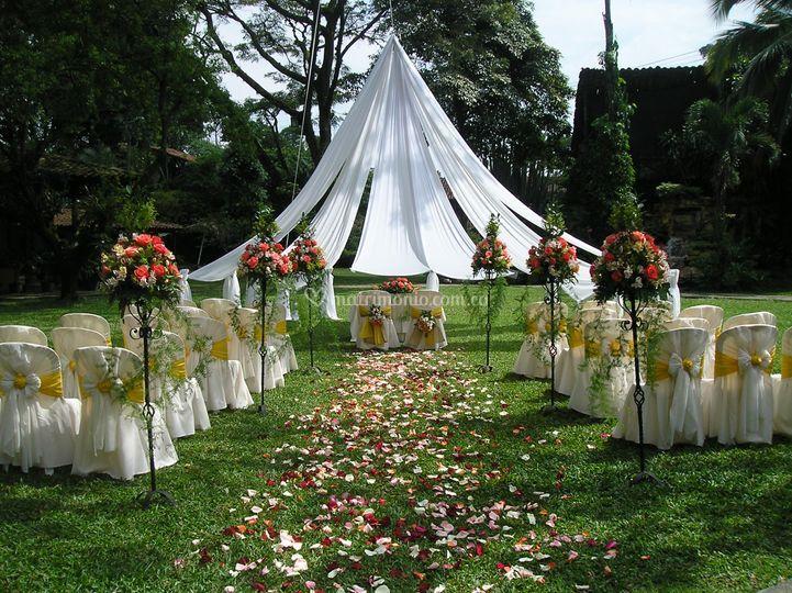 De Violetas Floristería y Eventos