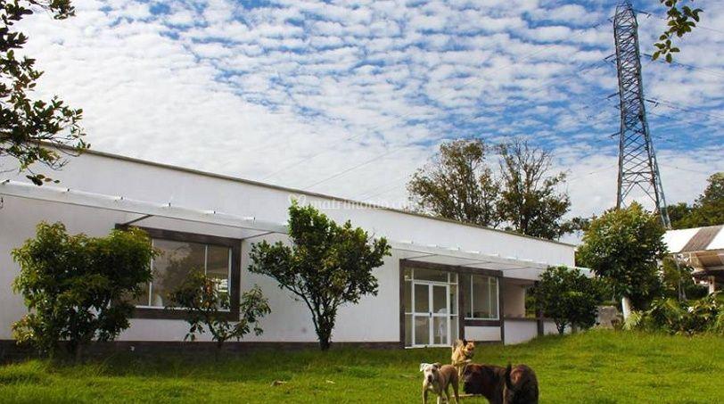 Villa Alejandra