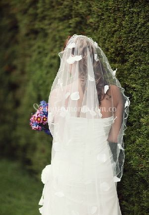 Brilla el día de tu boda