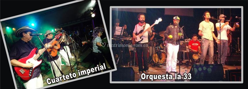 Experiencia orquestas en vivo