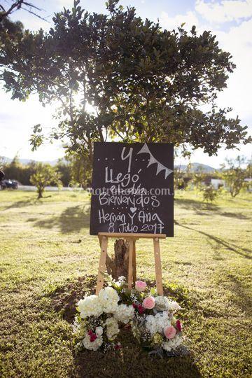 Bienvenida boda