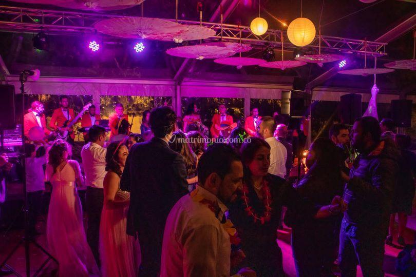 Ibiza bailable