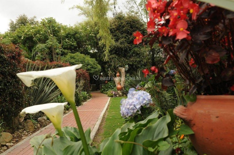 Nuestros jardines