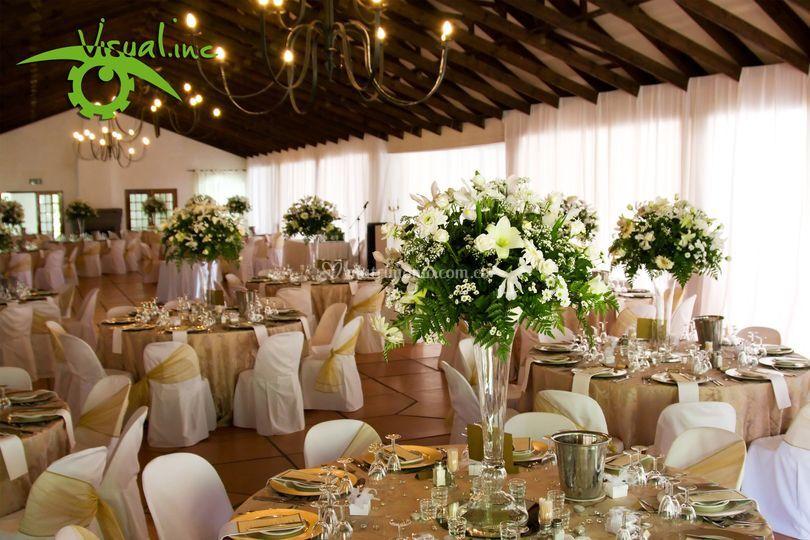 Fotos banquete