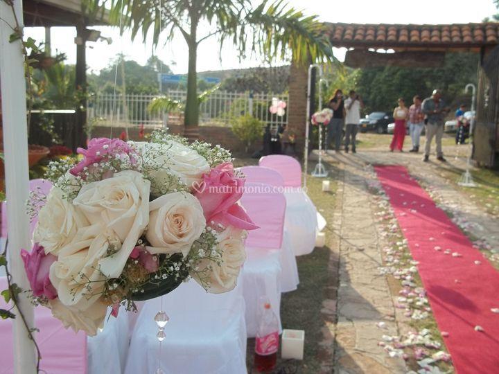 Eventos, Novias y Rosas