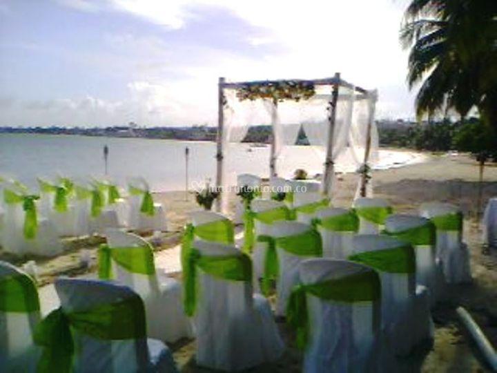 Tonos de bodas escojidos