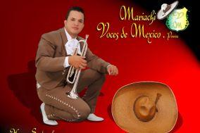 Mariachi Voces de Mexico Pereira