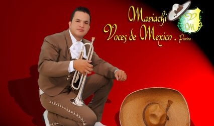 Mariachi Voces de Mexico Pereira 1