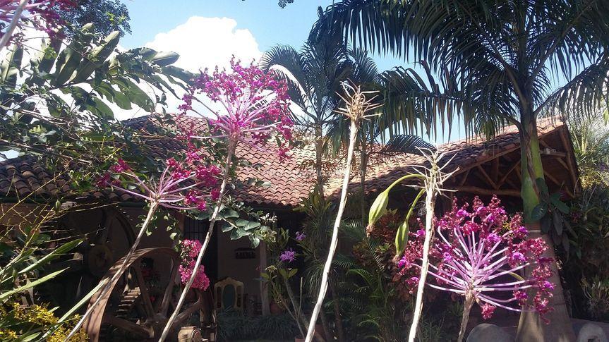 Jardín de la hacienda