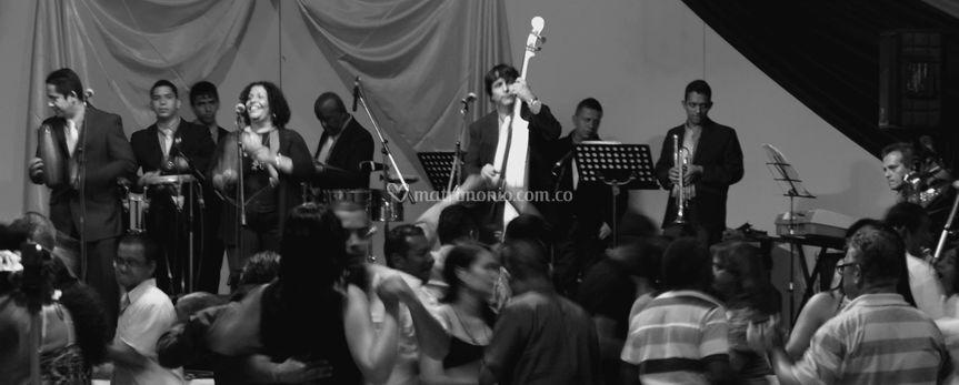 Sonora trucupey orquesta