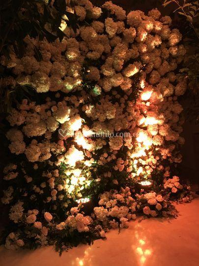 Back-in en flores