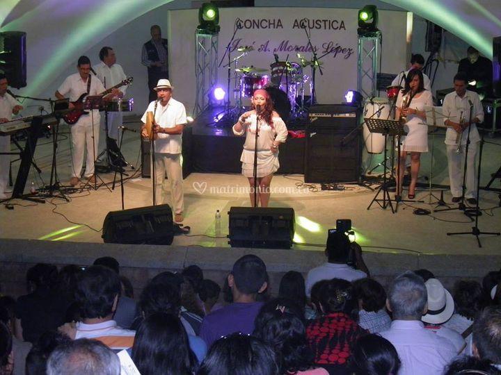 Grupo Canela