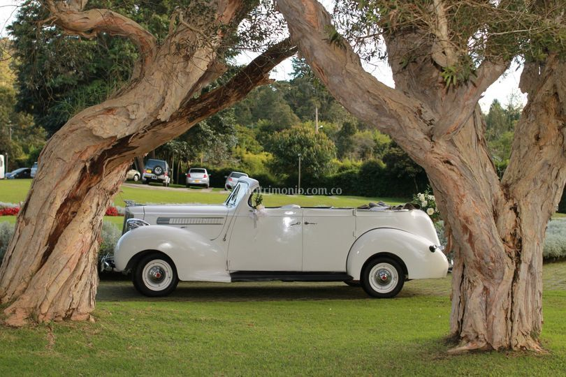 Convertible Packard 1939