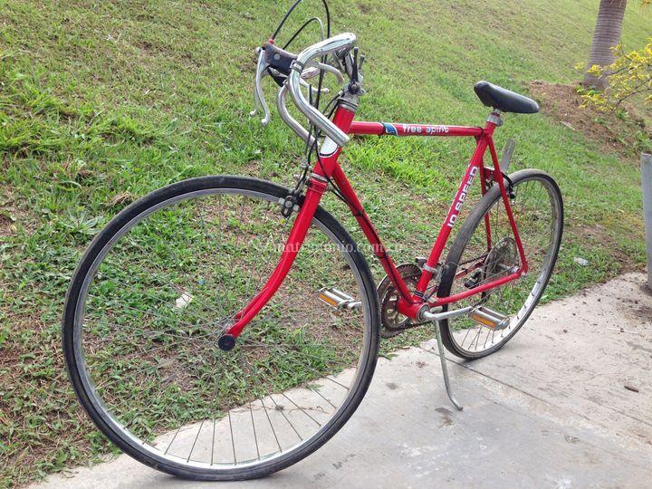 Bicicleta Free Spirit