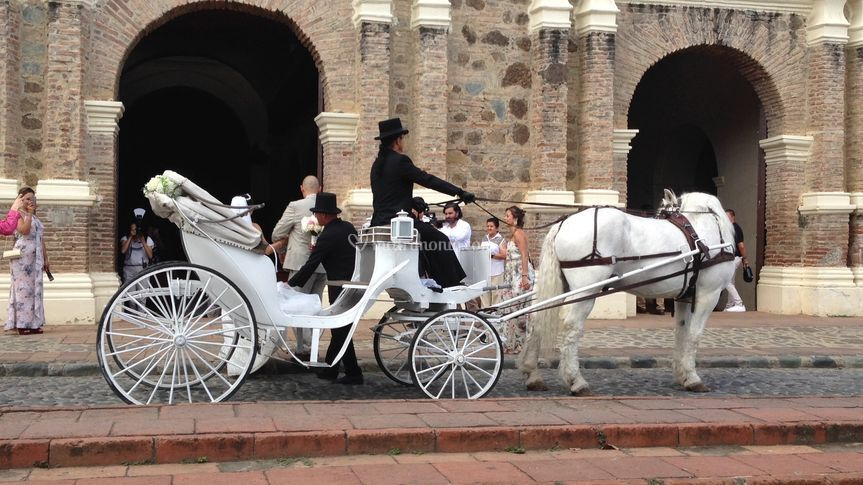 Carros de Bodas Arbeláez Ramírez