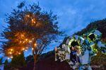 Le Jardín Eventos Grupo Medina