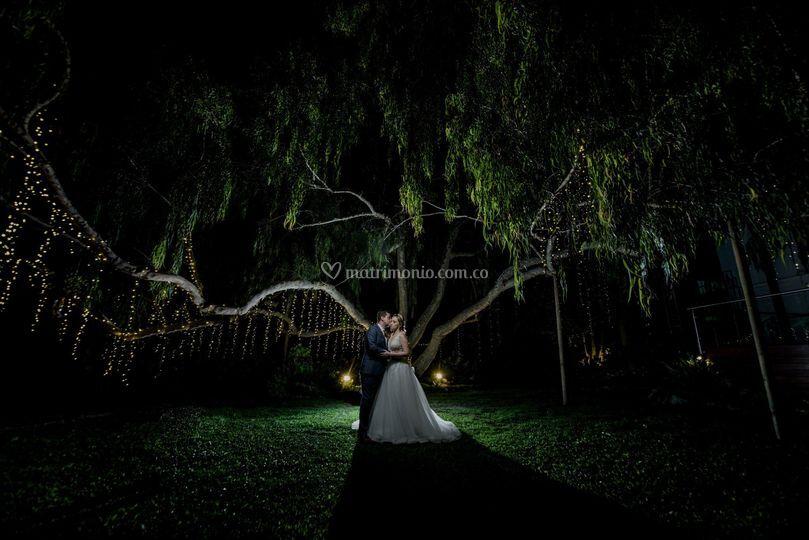 Fotos los magnolios