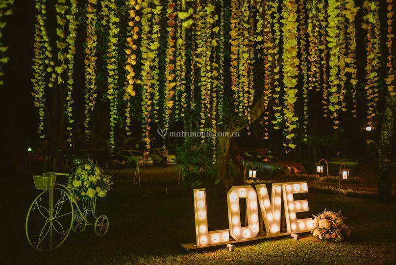 Love amarillo
