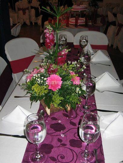 Presentación de la mesa