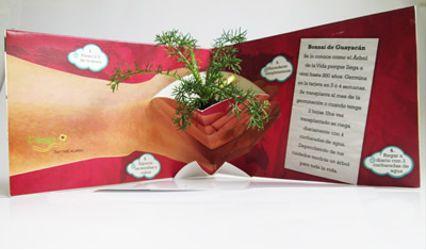 Eco regalos