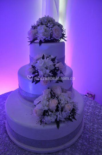 Maqueta torta