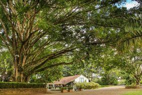 Hacienda Pampalinda