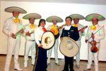 Instrumentos y cantantes de Acacias Mariachi