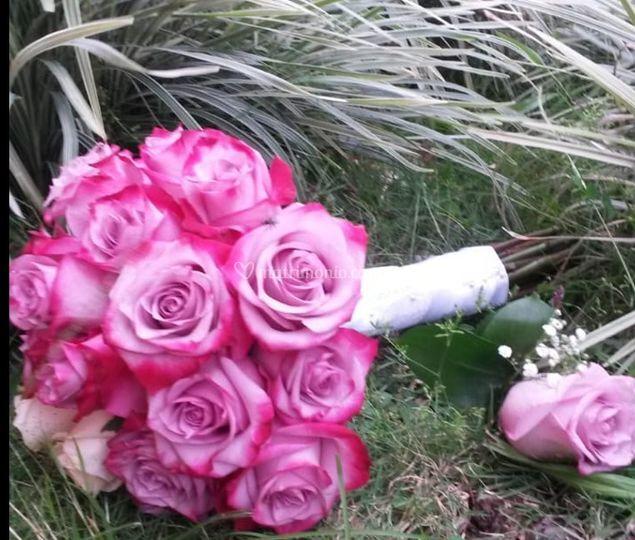 Inspiración color rosa