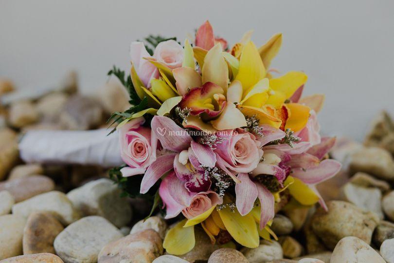 Bellas y hermosas flores