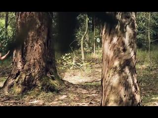 Trailer pre boda Natalia y Javier