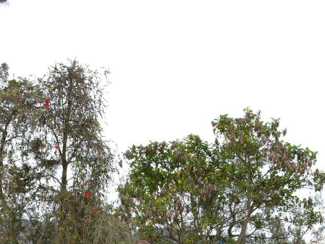 El matrimonio de Mauricio y Nancy en Sogamoso, Boyacá 4