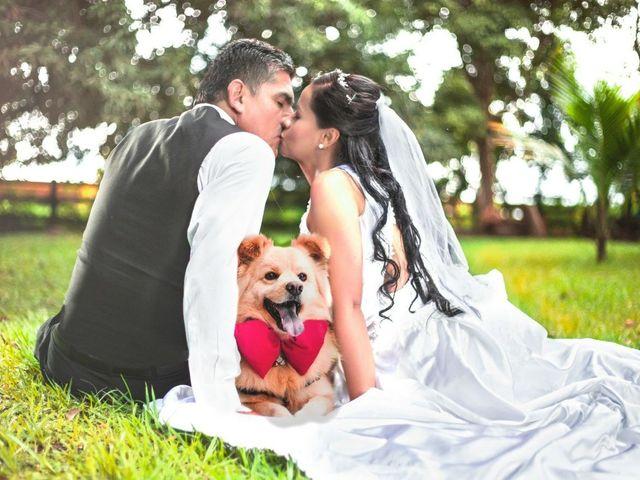 El matrimonio de Alberto y Fernanda en Cali, Valle del Cauca 2