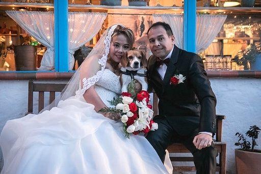 El matrimonio de Karina Cecilia  y Jean Carlos  en Bogotá, Bogotá DC 6