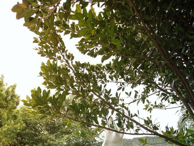 El matrimonio de Daniel y Camila en Sopó, Cundinamarca 6