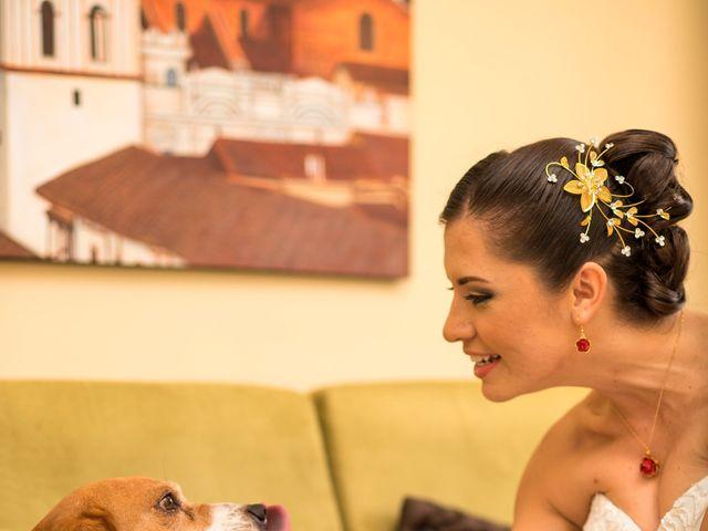 El matrimonio de Martín Ocampo y Paula Andrea Caicedo en Popayán, Cauca 8