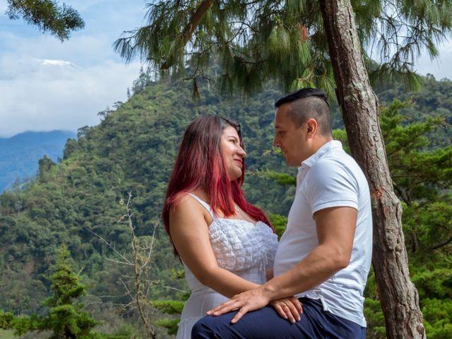 El matrimonio de Nelson y Lina en Ibagué, Tolima 5