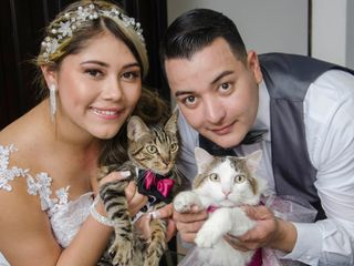 El matrimonio de Luisa y Robinson 2