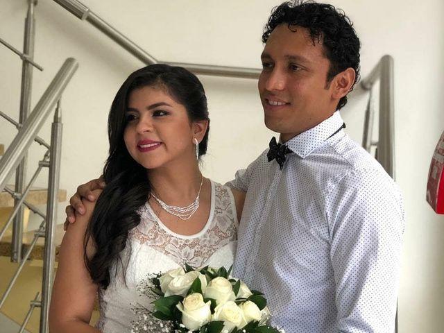 El matrimonio de Didier  y Daniela  en Ibagué, Tolima 3