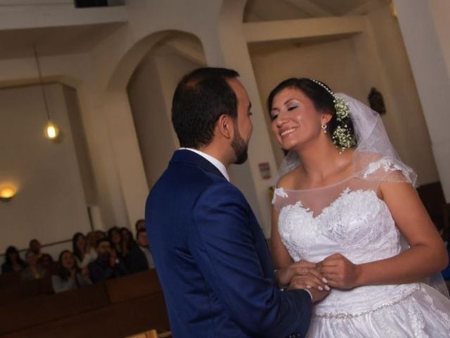 El matrimonio de Aljandro  y Daniela  en Bogotá, Bogotá DC 13