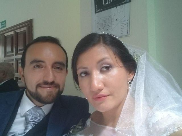 El matrimonio de Aljandro  y Daniela  en Bogotá, Bogotá DC 27