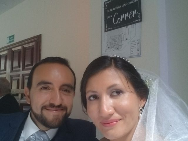El matrimonio de Aljandro  y Daniela  en Bogotá, Bogotá DC 28